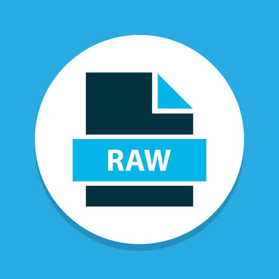 11 Pros and Cons of Shooting in Raw