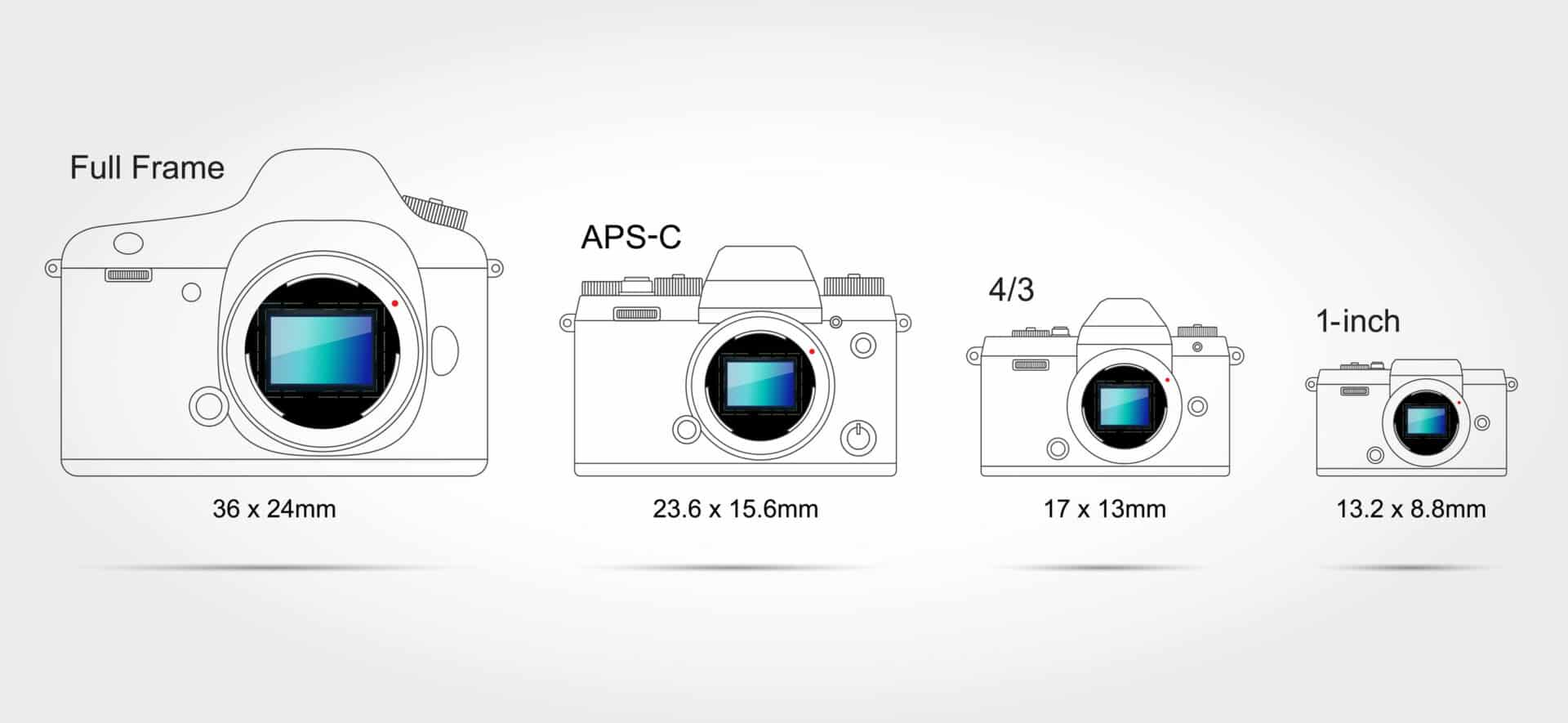 Full Frame to 1in Camera Sensor Size Photography Guide