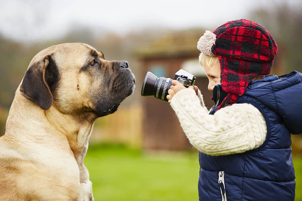 How Much Should Pet Photographers Charge?